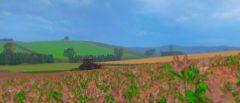 Cuttin' Some Alfalfa